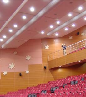 Konferans ve Gösteri Salonları